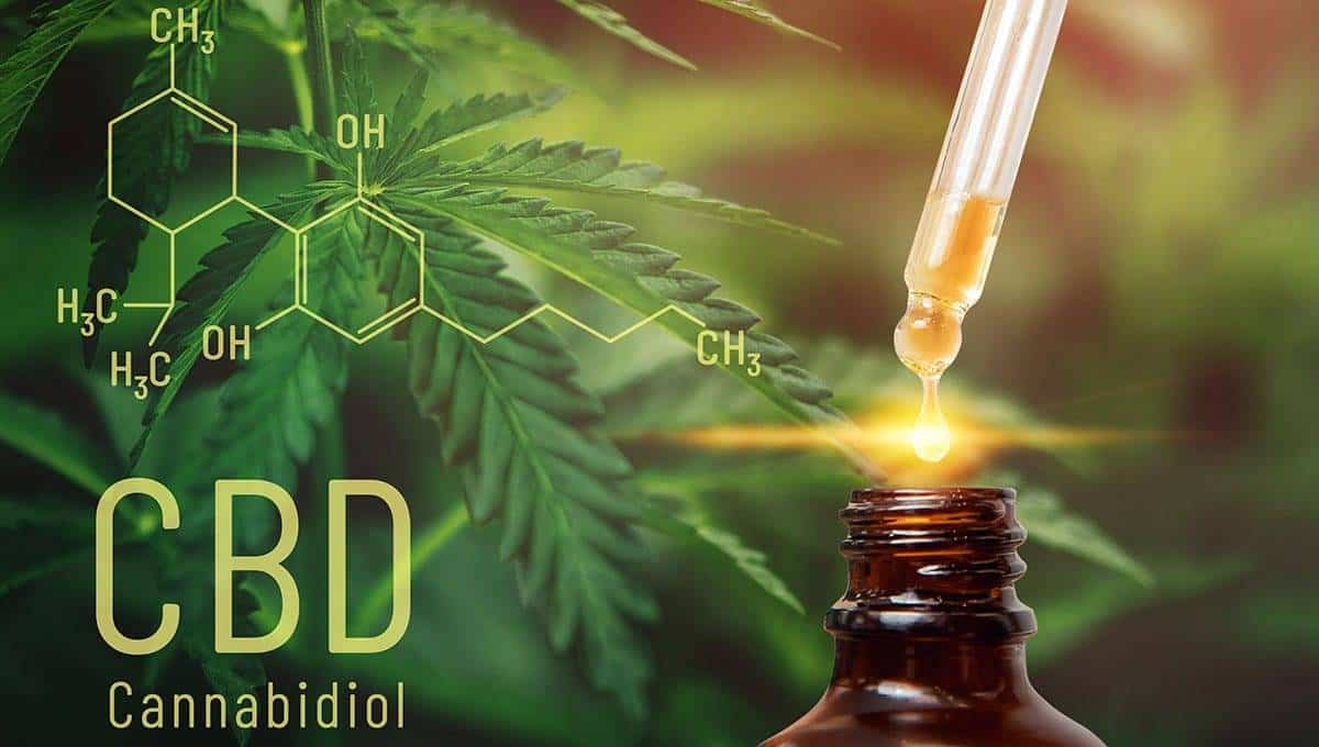 CBD oil extracts in bottle with cannabis leaves