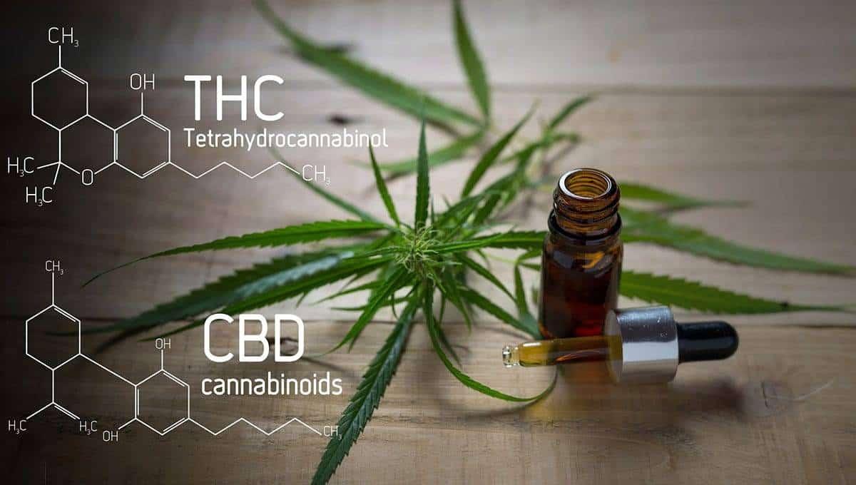 CBD and THC formula with CBD Tincture
