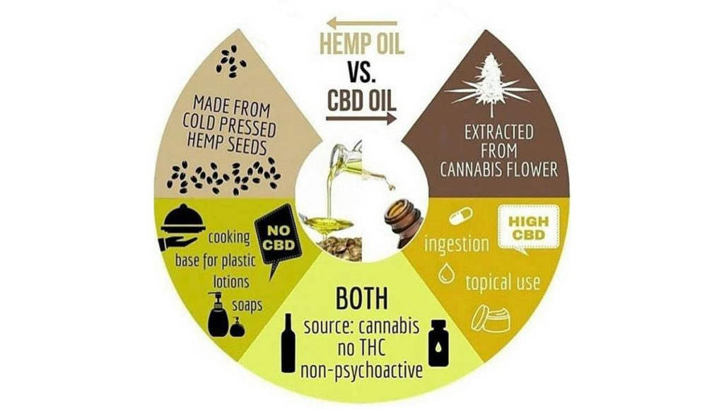 Hemp versus CBD oil illustration differences