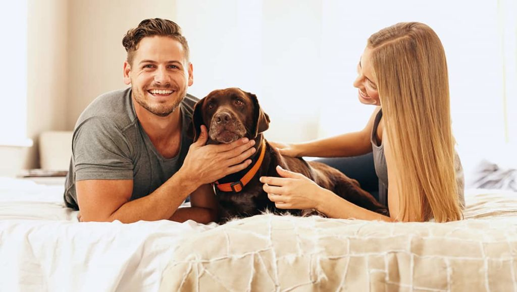 Happy couple playing their dog on bed